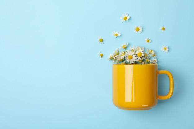 Cup and chamomile on blue background. chamomile tea Premium Photo