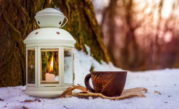 Cup of coffee in winter forest next to lantern with candle near old tree in the evening Premium Photo
