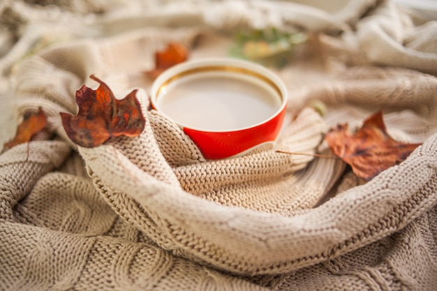 Cup of coffee wrapped in a woolen beige sweater Premium Photo