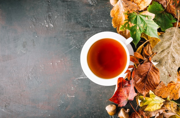Cup of tea and pile of leaves Free Photo