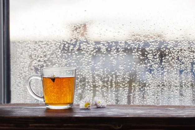 Cup of tea with chamomile flowers on  of  window with raindrops at sunset Premium Photo