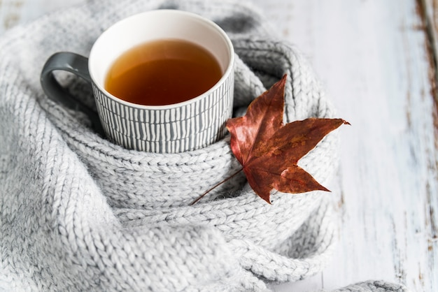 Cup with tea in knitted scarf with maple leaf Free Photo