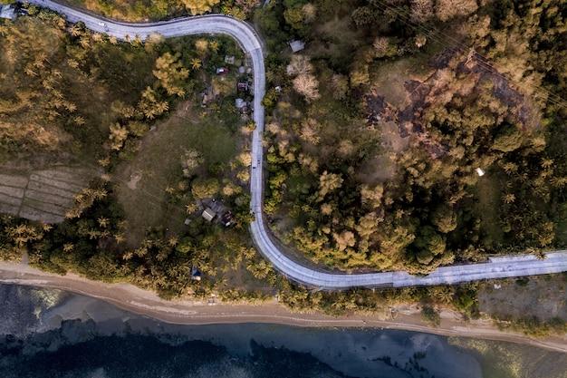 Strada sinuosa in mezzo a campi erbosi coperti di alberi vicino al mare Foto Gratuite
