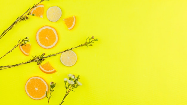 Cut citrus fruits and flowers on bright background Free Photo
