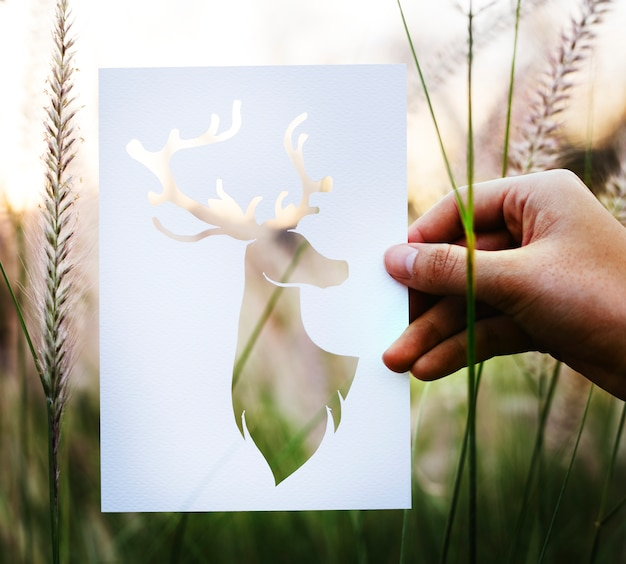 Cut out of a deer Free Photo