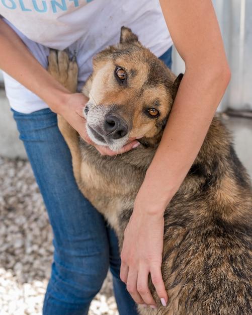 Simpatico cane abbandonato in attesa di essere adottato da qualcuno Foto Gratuite