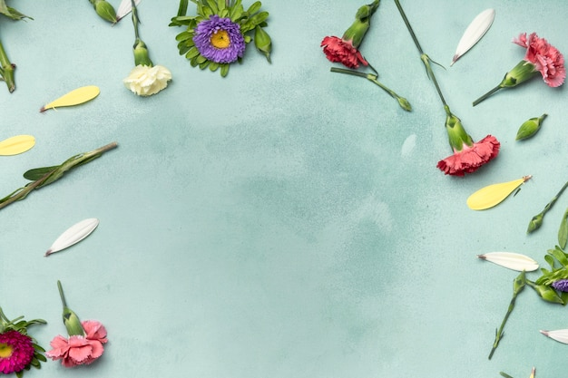 Cute arrangement of flowers on blue background with copy space Free Photo
