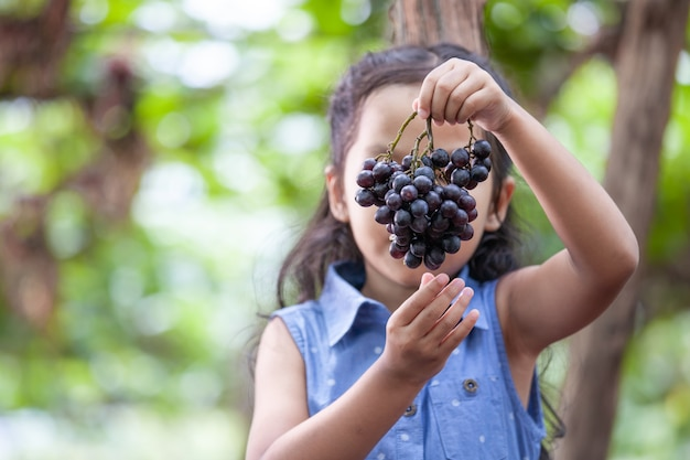 are red grapes good for gastritis