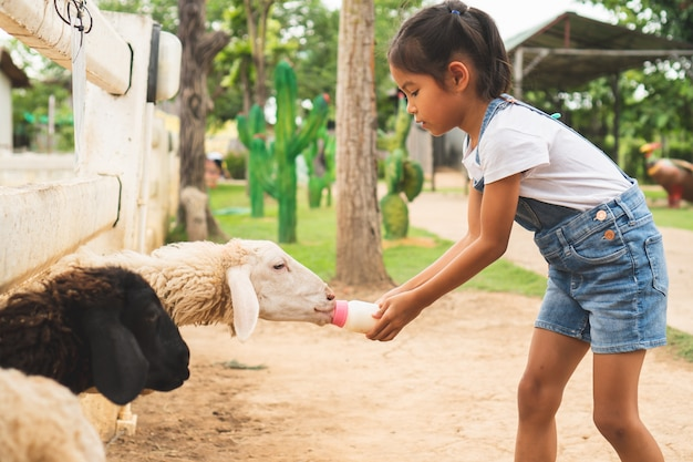Cute asian child girl is feeding a bottle of milk to little lamb in the zoo Premium Photo