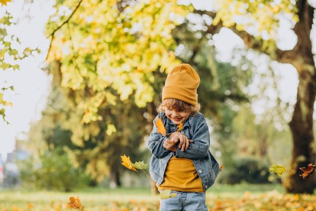 秋の公園の葉で遊ぶかわいい男の子 無料写真
