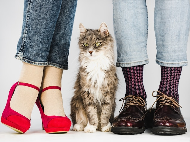 スタイリッシュな靴でかわいい、魅力的な子猫と若いカップル Premium写真