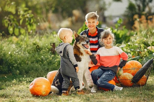 Cute childresn sitting on a garden near many pumpkins Free Photo