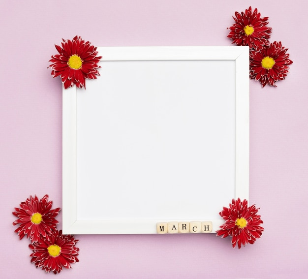 Cute flowers and elegant white frame Free Photo