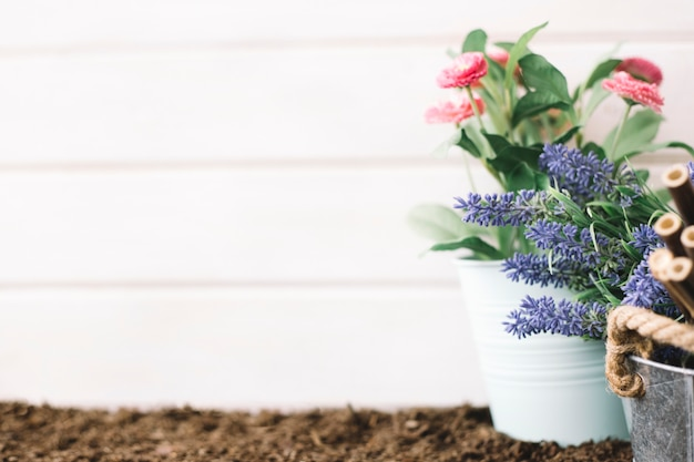 Cute gardening concept Free Photo