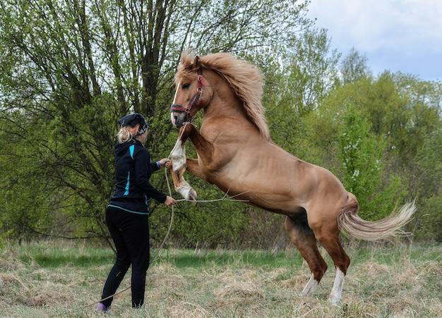 若い馬を訓練するかわいい女の子 Premium写真