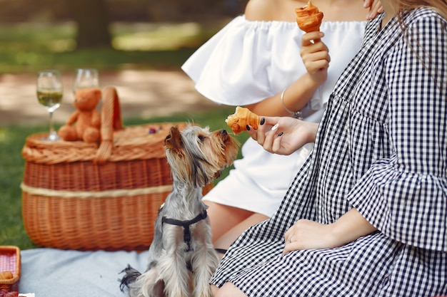Cute girls in a park playing with little dog Free Photo