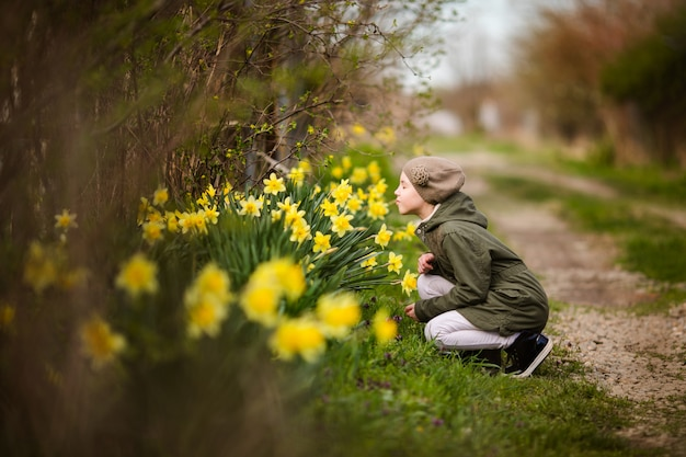 Cute happy little girl in the spring country smelling yellow daffodils Premium Photo
