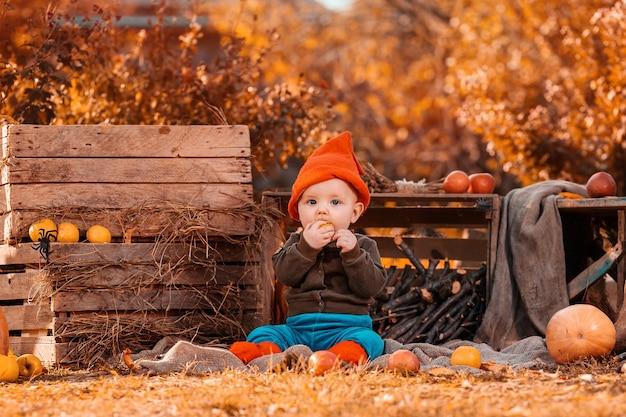 農業の装飾に囲まれた黒い猫と草の上に座って、リンゴを食べているノームの衣装を着たかわいい男の子。 Premium写真