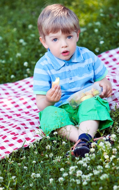 Cute little boy at picnic in the park Free Photo