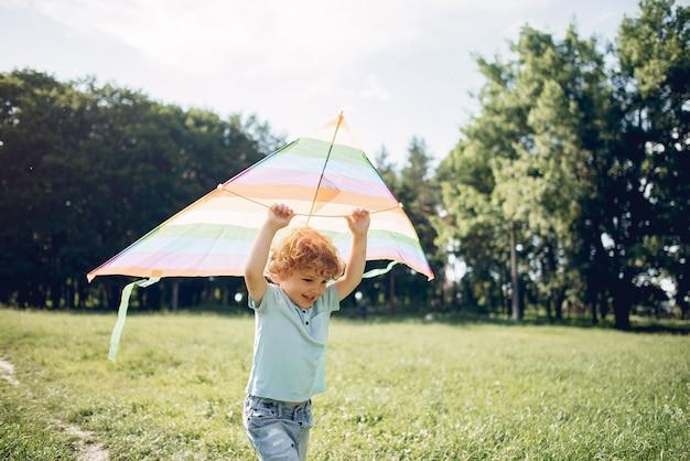 Carino piccolo bambino in un campo estivo con un aquilone Foto Gratuite