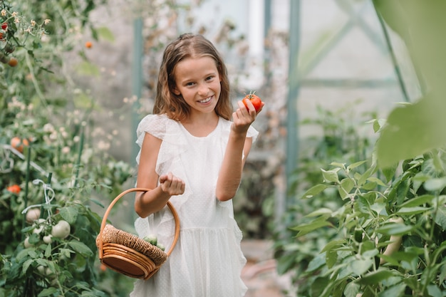 Cute little girl collects crop cucumbers and tomatos in greenhouse Premium Photo