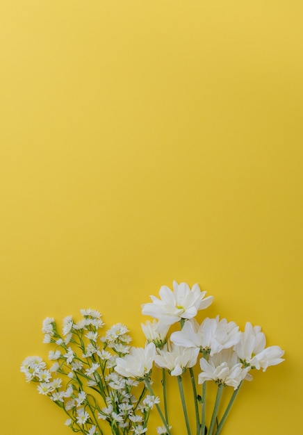 Cute little white cutter flowers and daisy flowers on yellow cute little white cutter flowers and daisy flowers on yellow background with space premium photo mightylinksfo