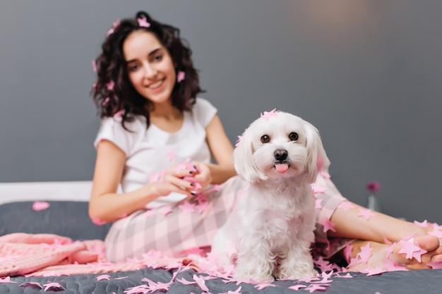 かなり若い女性とベッドの上の舌を示すかわいい素敵な小さな犬。家畜と一緒に家で身も凍る、面白い瞬間 無料写真