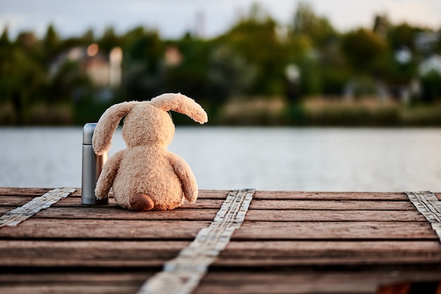 Cute soft rabbit with a thermos on the pier near the lake in the sunlight. Premium Photo