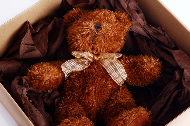 Cute teddy bear in the gift box Free Photo