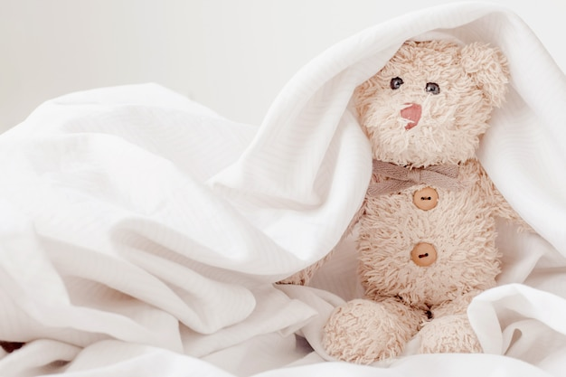 Cute teddy bear play hide and seek with fabric, happy feel concept. Premium Photo