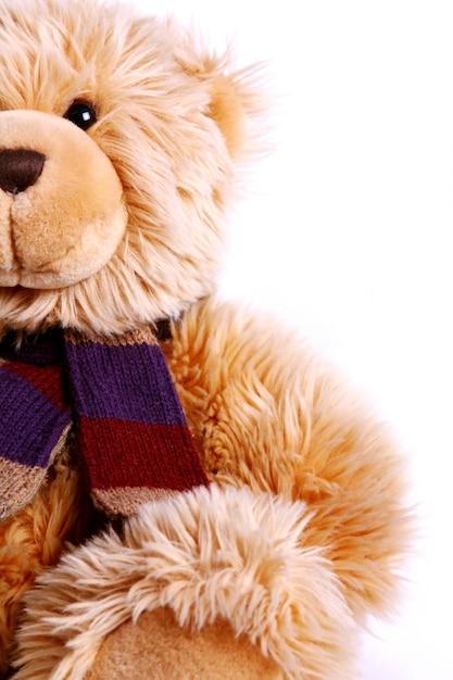 Cute teddy bear Free Photo