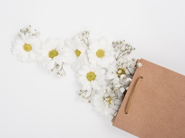 Daisies in a paper gift bag top view Free Photo