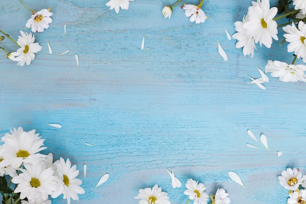 Daisies on wooden shabby surface Free Photo