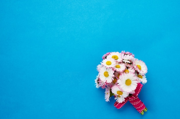 Daisy bouquet on bright blue background. Premium Photo