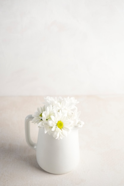 Daisy flowers in jug on table Free Photo