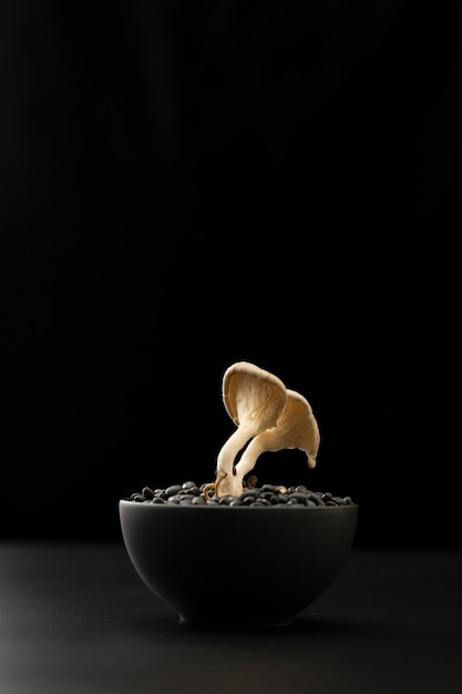 Dark bowl with beans and mushrooms on a dark table Free Photo