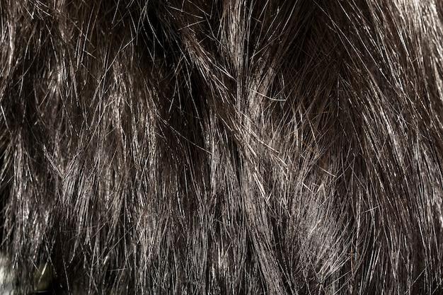 Dark brown hair texture | Premium Photo