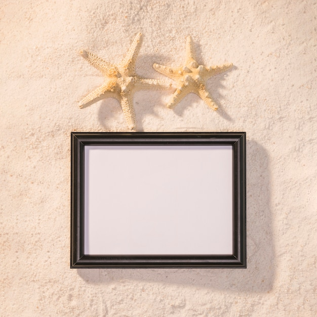 Dark picture frame with starfishes Free Photo