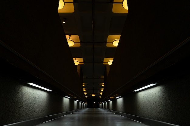 Dark tunnel with turned-on lamps on the ceiling Free Photo