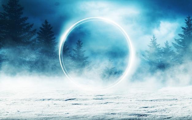 밤에 어두운 겨울 숲 배경 프리미엄 사진