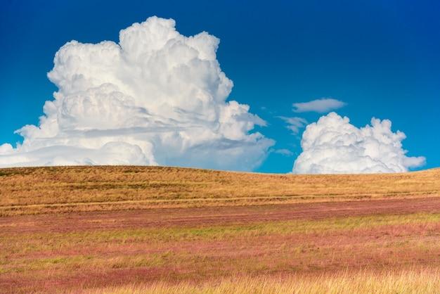 東のトビリシから修道院の複合体david garejiに向かう途中のジョージアの草原の風景。 Premium写真