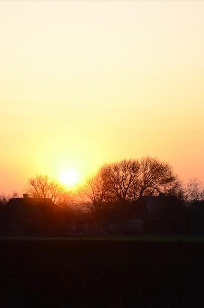 Dawn in the village. sunrise in the suburban landscape Premium Photo