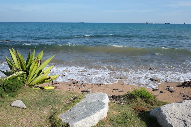 Daytime seaside view in thailand Premium Photo