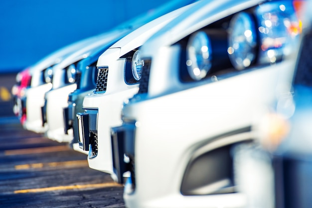 Dealer cars for sale Free Photo