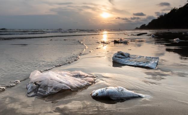 Death fish and plastic pollution environment. Premium Photo