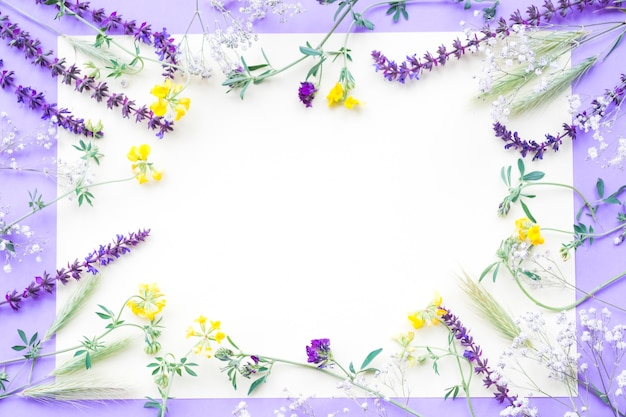 Decoration of flowers on white paper over the purple background Free Photo
