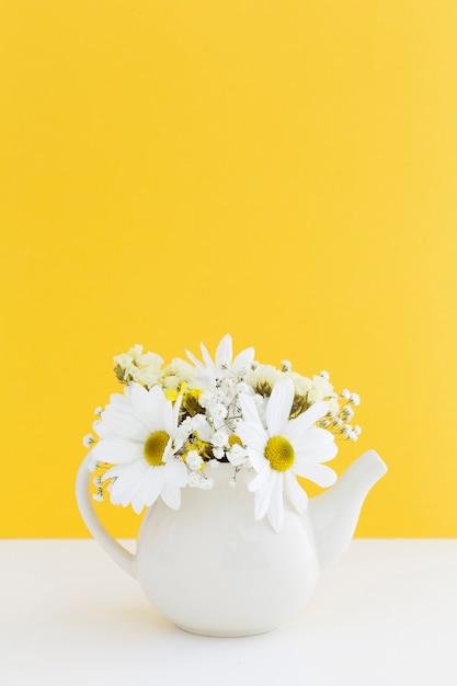 Decoration with white daisies in a vase Free Photo