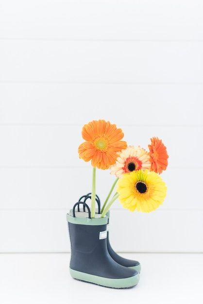 Decorative colorful daisy flowers in boots Free Photo