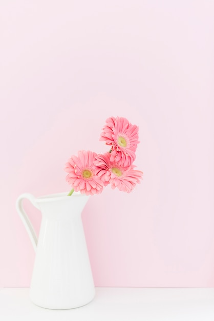 Decorative colorful daisy flowers in a vase Free Photo
