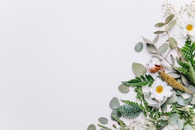 Decorative floral background Premium Photo